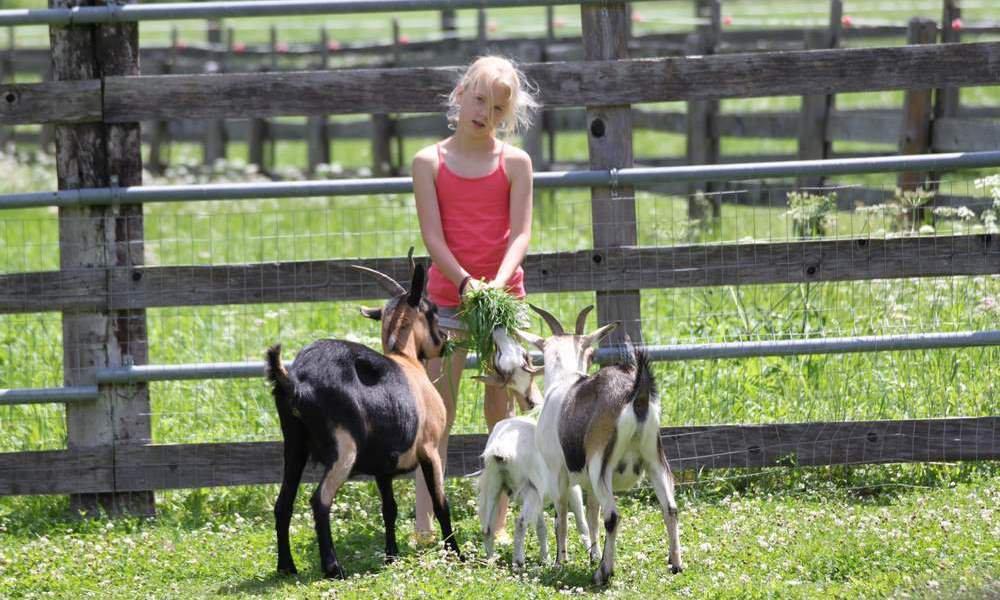 Vacanza in famiglia in agriturismo in Alto Adige