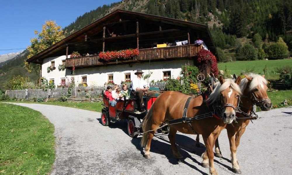 Romantici giri in carroza al maso Oberauerhof