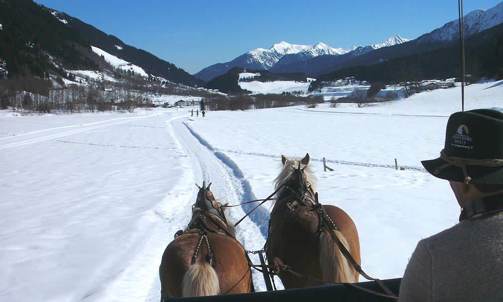 Wie wäre es mit einer herrlichen Pferdeschlittenfahrt?
